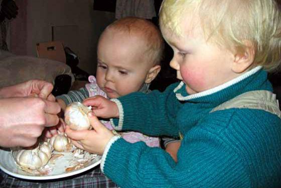 Чеснок детям можно добавлять в пищу с года
