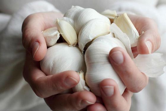 Использование чеснока для избавления от гельминтоза