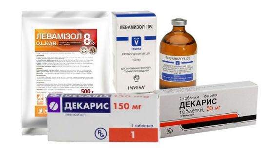 Препараты левамизола для лечения гельминтоза