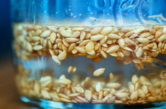 Замачивание семян в воде перед использованием в пищевых и косметических целях