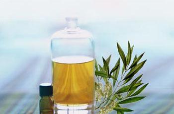 Как пользоваться маслом чайного дерева от прыщей