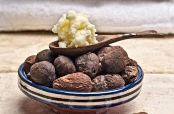 Масло ши (карите), применение и полезные свойства, рецепты масок и кремов
