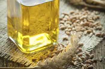 масло мяты свойства и применение для тела