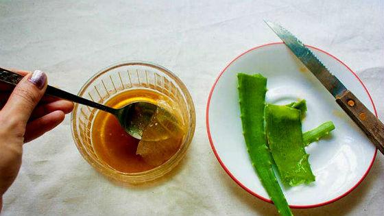 Настойка алоэ с медом и кагором: как готовить и применять
