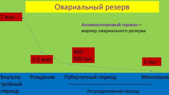 График снижения овариального резерва в зависимости от возраста