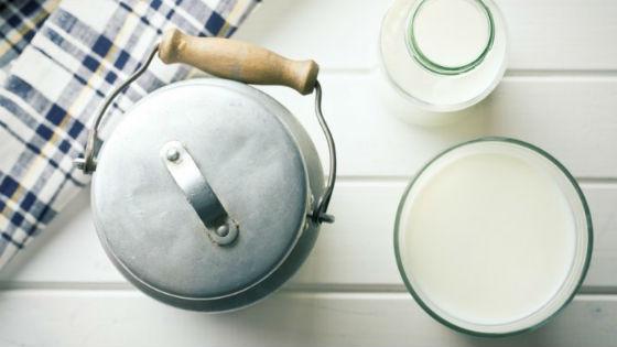 Молоко как основная еда на диете