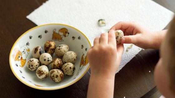 Яйца перепелов в питании детей