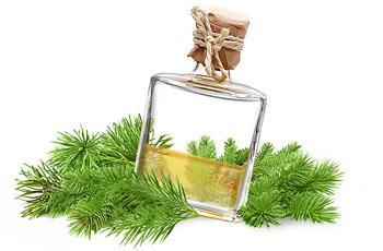 Пихтовое масло, полезные свойства, применение, лечение пихтовым маслом, 28 рецептов, противопоказания
