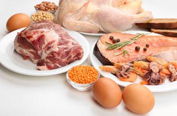 Разрешенные к употреблению продукты для похудения на белковой диете