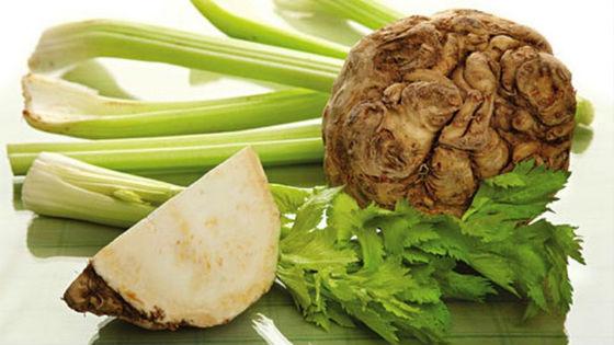 Сок сельдерея: польза, в чем вред, как готовить и пить, для похудения и лечения, кому пить нельзя