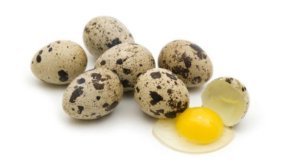 Полезные свойства сырых яиц перепелов