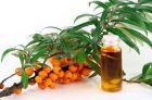 Облепиховое масло, свойства и применение