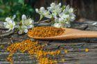 Польза пыльцы пчел для организма человека