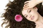 Здоровые волосы – залог правильного питания