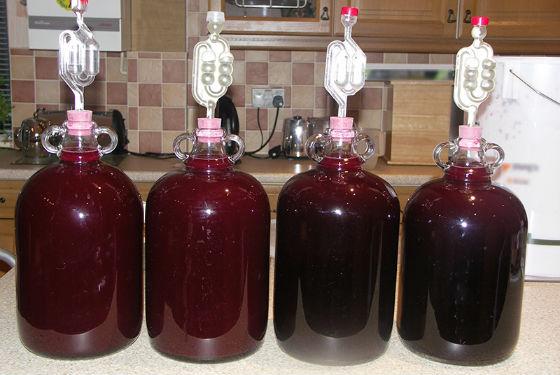 Домашнее целебное вино из аронии